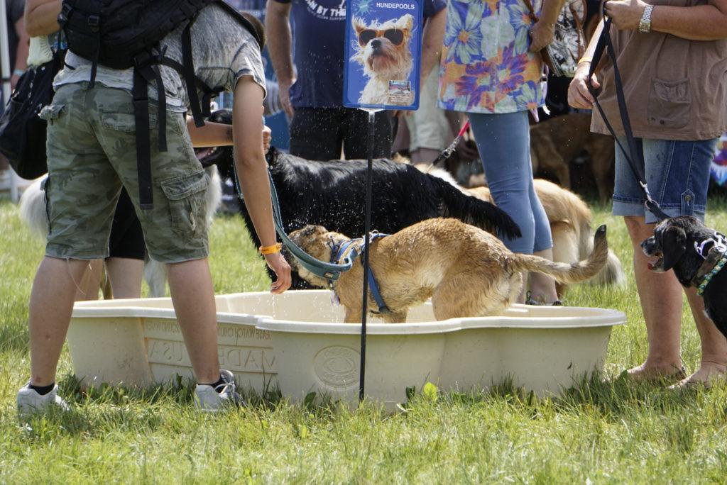 Hundetag Baden