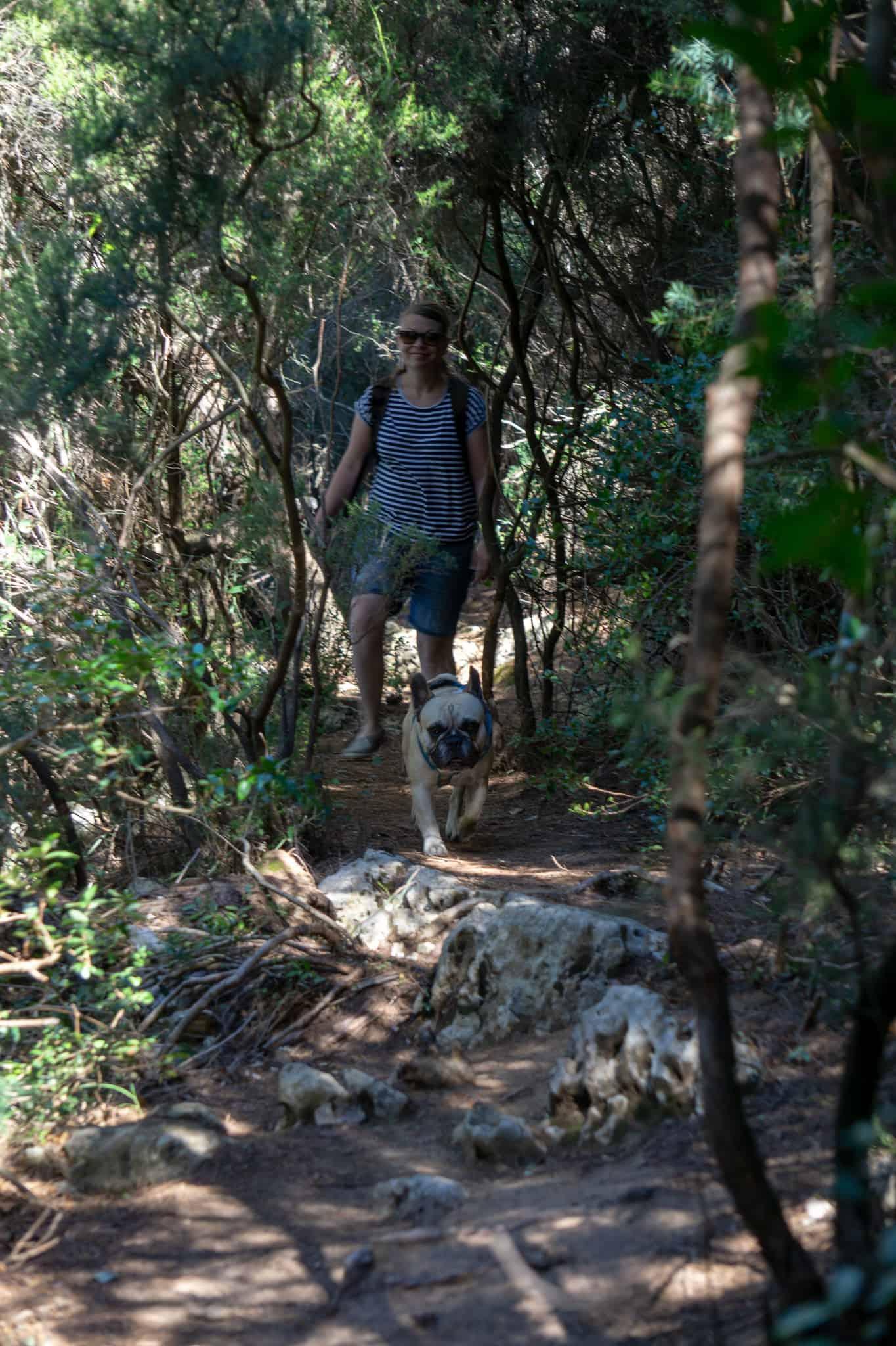 Urlaub Wandern Hund Kap Kamenjak Kroatien