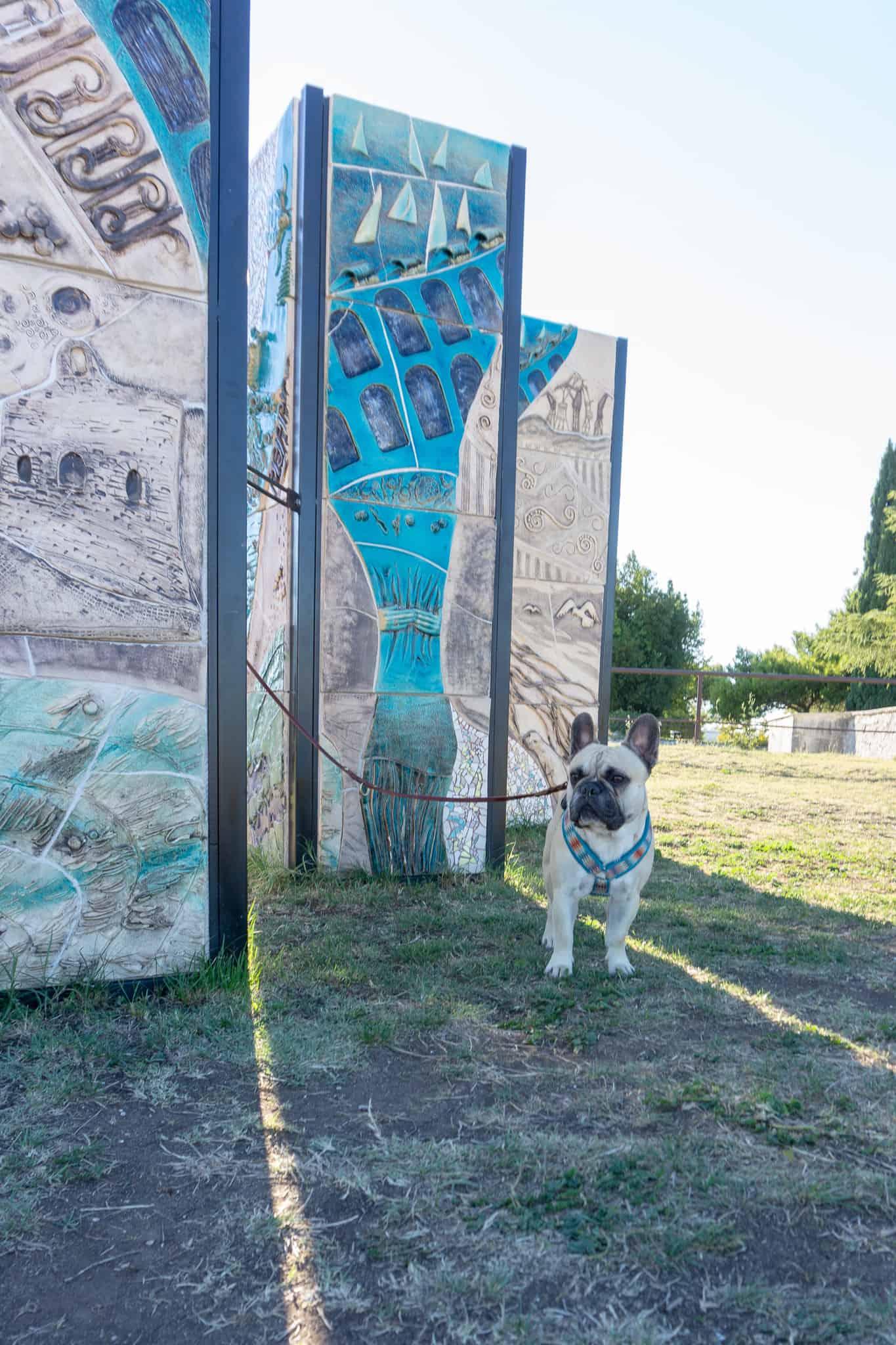 Urlaub Hund Pula Sightseeing Kroatien
