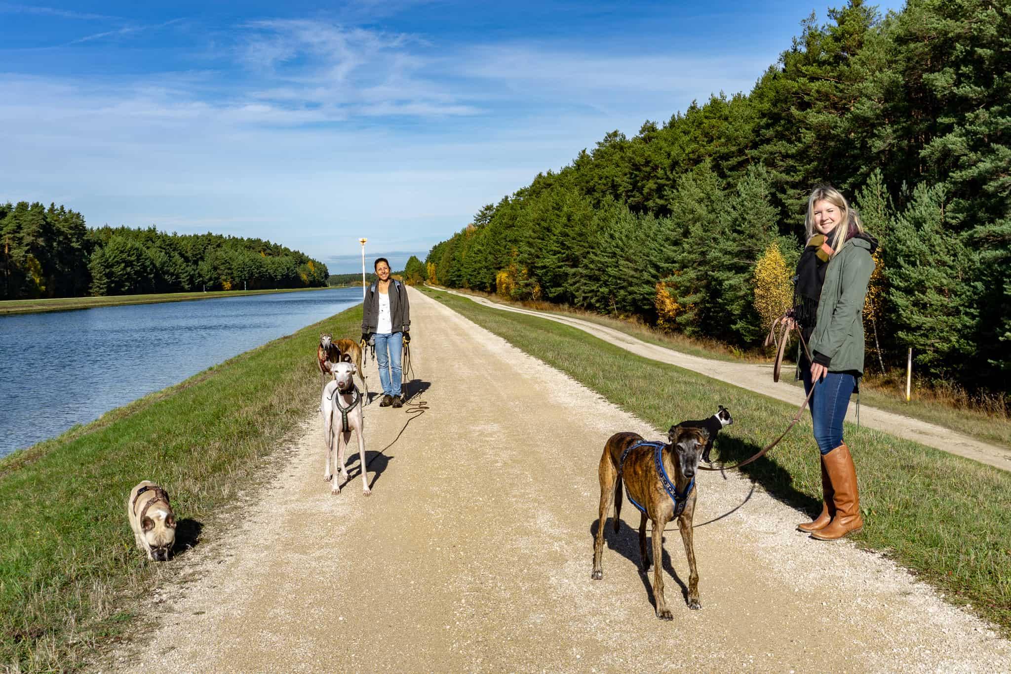 Hundereise-Donau Main Kanal