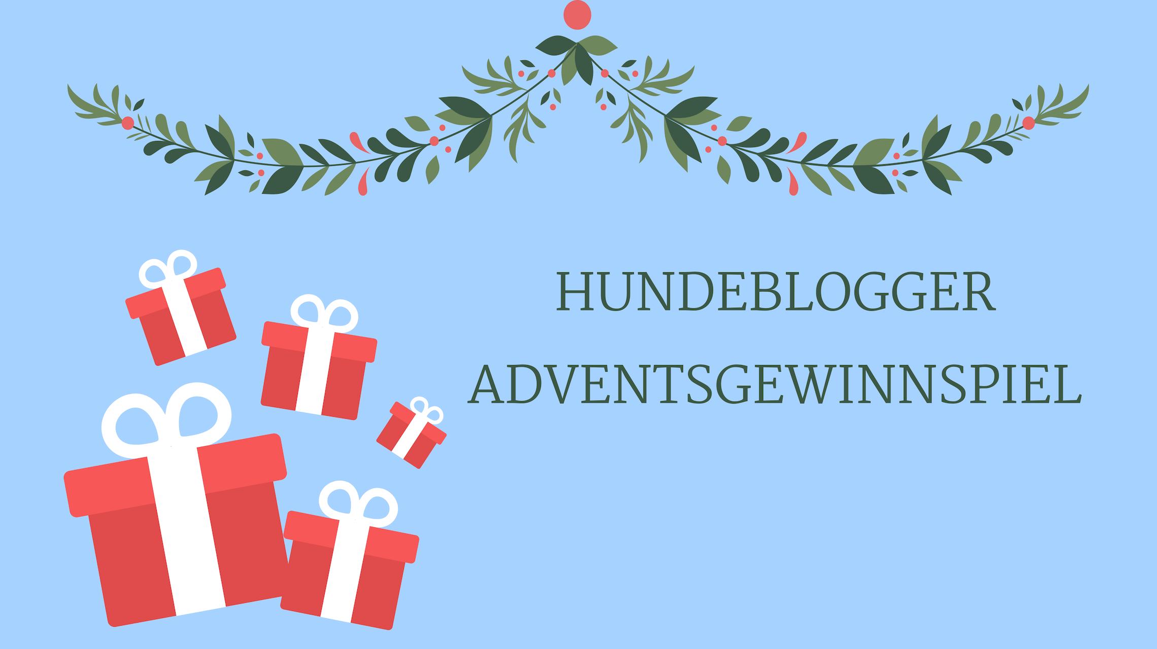 Hundeblogger-Adventsgewinnspiel