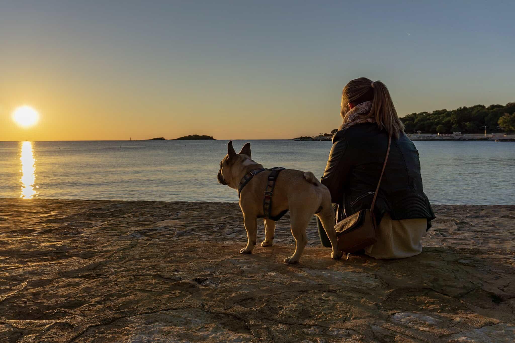Urlaub Hund Kroatien Hundereise