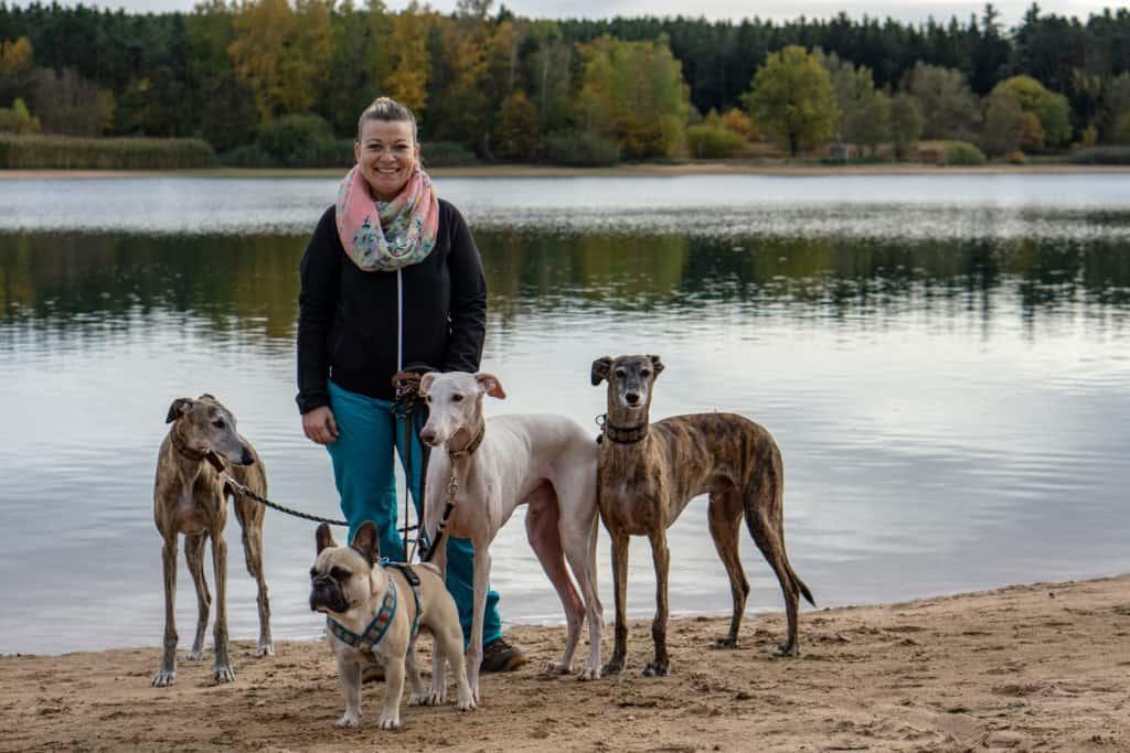 Hundereise Urlaub Rothsee Deutschland