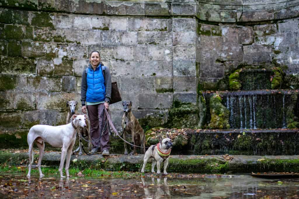 Hundereise Wandern Sophienquelle Deutschland