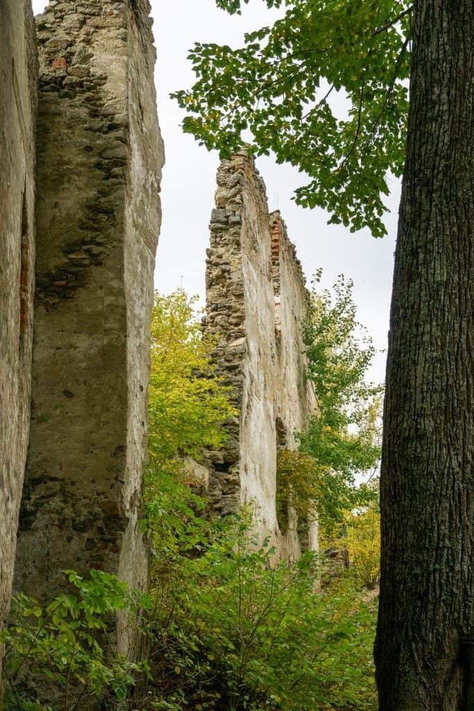 Ruine Lichtenfels Hundereise
