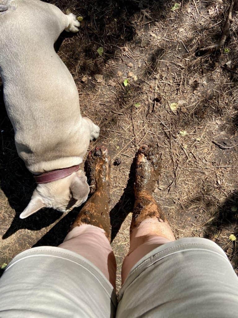 Archie untersucht meine Moor-Beine